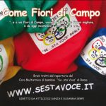 cropped-come-fiori-di-campo_bookSTAMPA-2-2.jpg